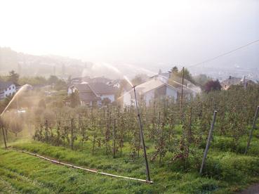 L 39 informatore agricolo l 39 informateur agricole for Irrigazione per aspersione